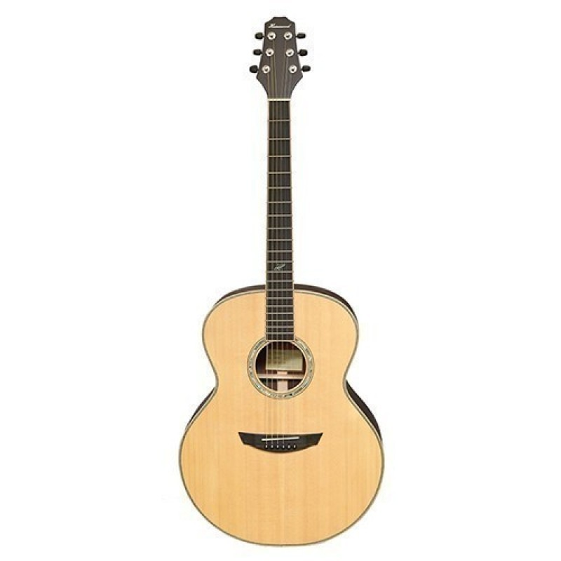 Haineswood Masterworks MWD95 Dreadnought