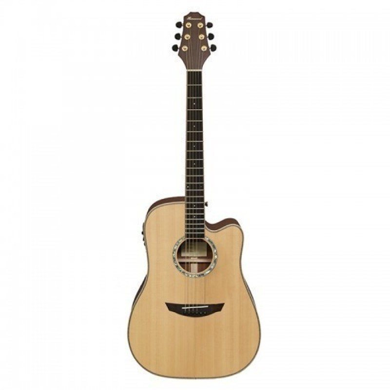 Haineswood Masterworks MWD95CE Dreadnought Cutaway Electro