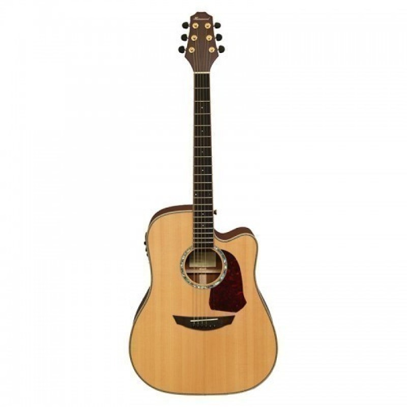 Haineswood Premier PRD90CE Dreadnought Cutaway Electro