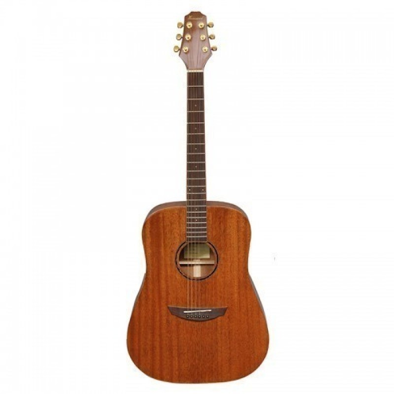 Haineswood Exotic EXD70M Dreadnought