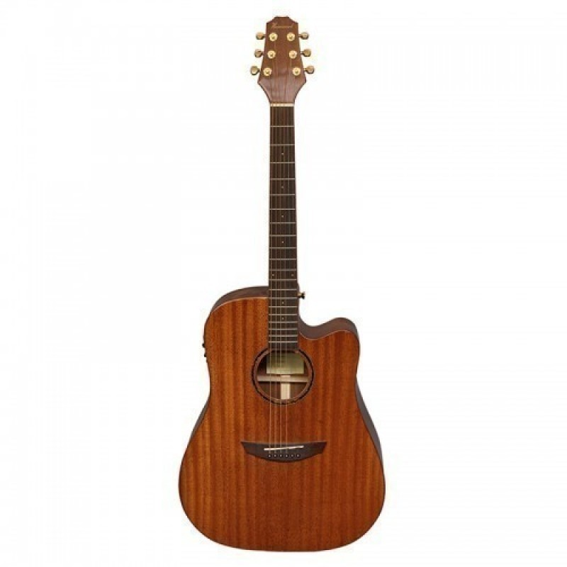 Haineswood Exotic EXD70MCE Dreadnought Cutaway Electro
