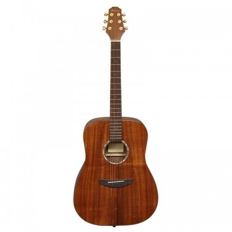 Haineswood Exotic EXD70KO Dreadnought
