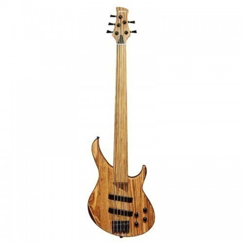 Haineswood H2200NL Electric 5 String Fretless Bass Guitar