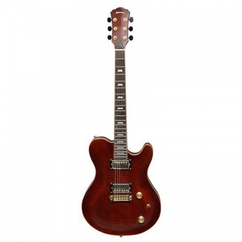Haineswood HGM-F Electric Guitar Artist Series