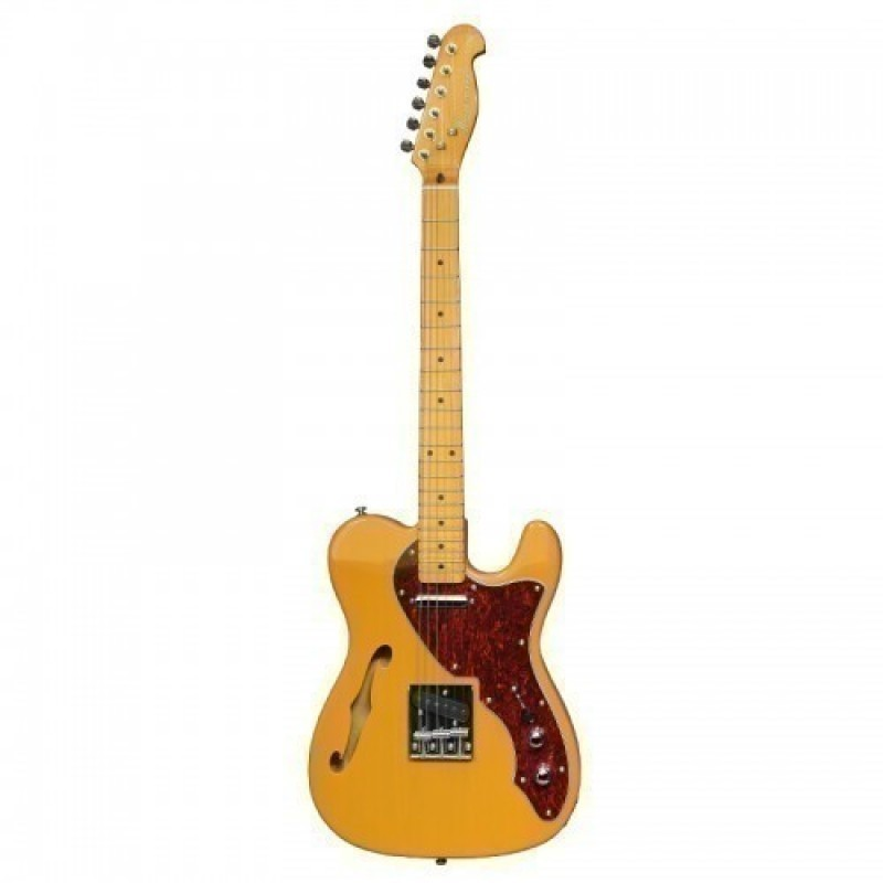 Haineswood HTL-SHH Tele Electric Guitar  Premier Series