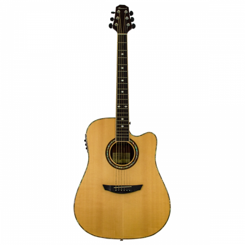 Haineswood Artist ARD85CE Dreadnought Cutaway Electro